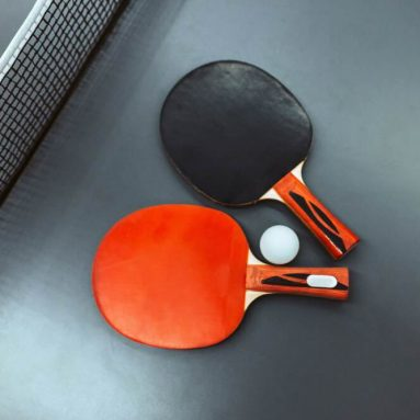 Best 7 Ping Pong Paddle Sets in 2020 (in-depth reviews)