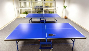 Top Best Folding Ping Pong Tables in 2020 (In-depth Buying Guide)